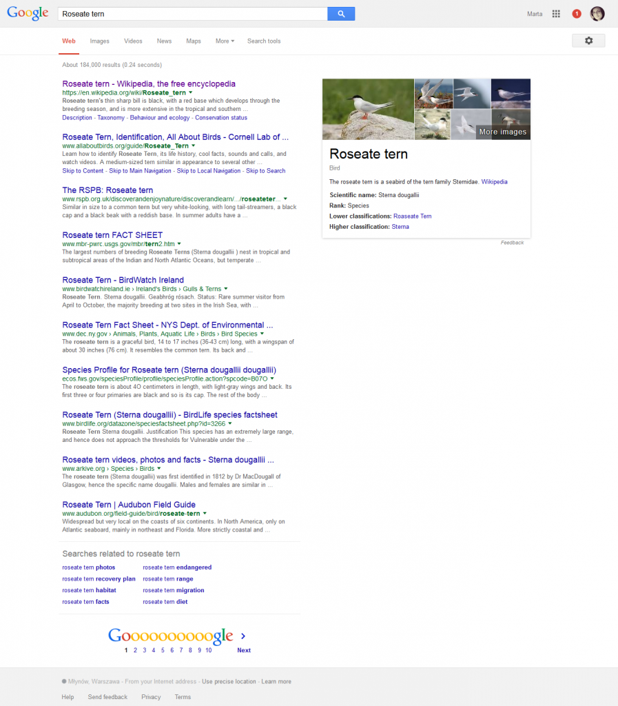 screenshot-www google rybitwa rozowa