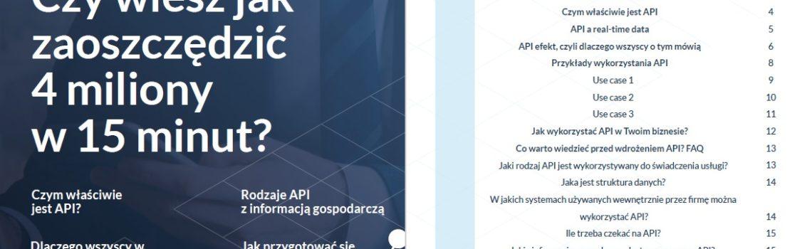 przewodnik po API